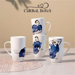 Carrol Boyes catalogue ( More than a month )
