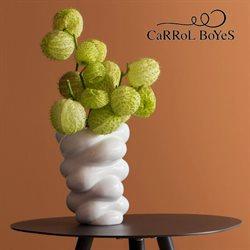 Carrol Boyes catalogue ( Expired )
