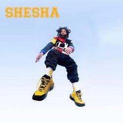 Shesha catalogue ( 2 days ago )