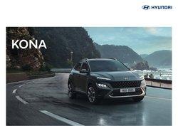 Hyundai catalogue ( More than a month)