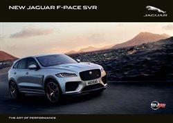 Jaguar catalogue in Port Elizabeth ( More than a month )