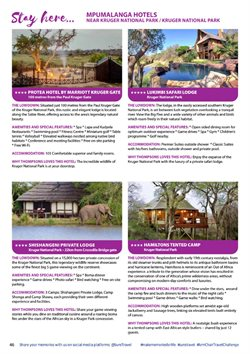 Safari specials in Sure Travel