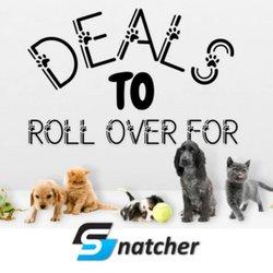 Snatcher catalogue ( 10 days left )