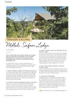 Safari specials in Wellness Warehouse