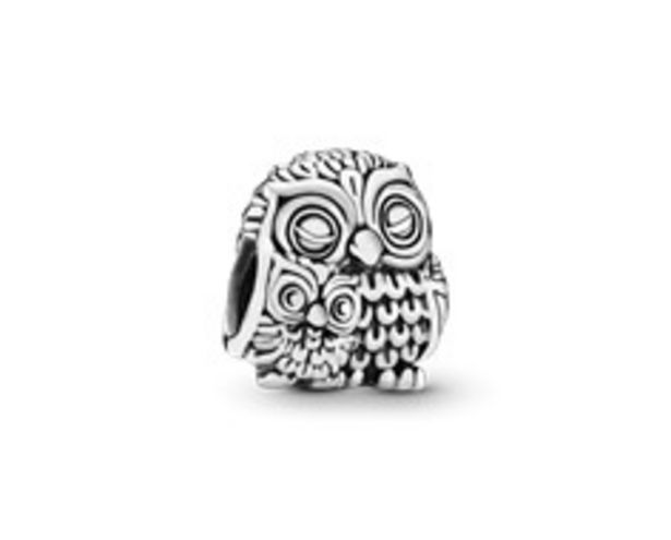 Mother Owl and Baby Owl Charm offers at R 699