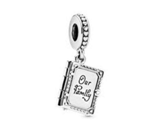 Family Book Dangle Charm offers at R 979