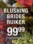 Blushing Brides Ruiker offer at R 99,99