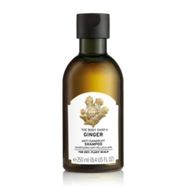 Ginger Anti-Dandruff Shampoo 250ml offers at R 155