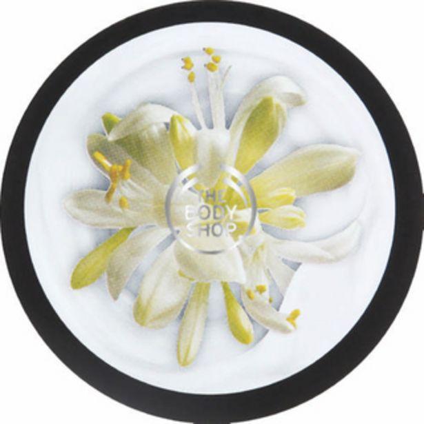 Moringa Body Yoghurt 200ml offers at R 175