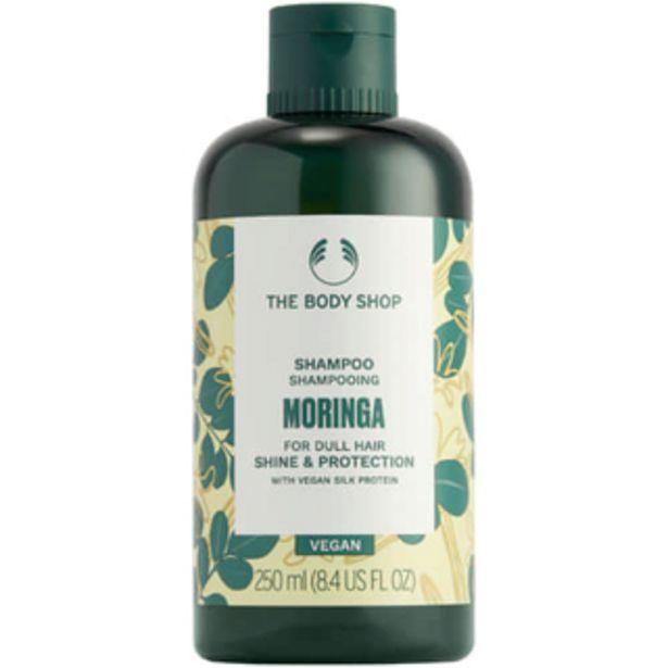 Moringa Shine & Protection Shampoo 250ml offers at R 155