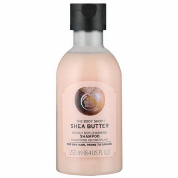 Shea Richly Replenishing Shampoo 250ml offers at R 155