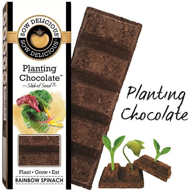 Sow Delicious Planting Chocolate - Rainbow Sp... offer at R 49