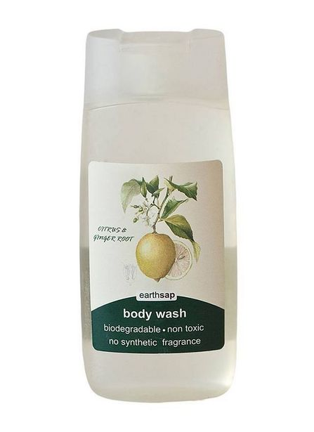 Earthsap Citrus & Ginger Body Wash offers at R 109