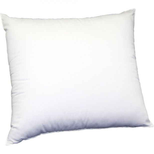 House Of Hamilton Single Conitinental Pillow offer at R 199