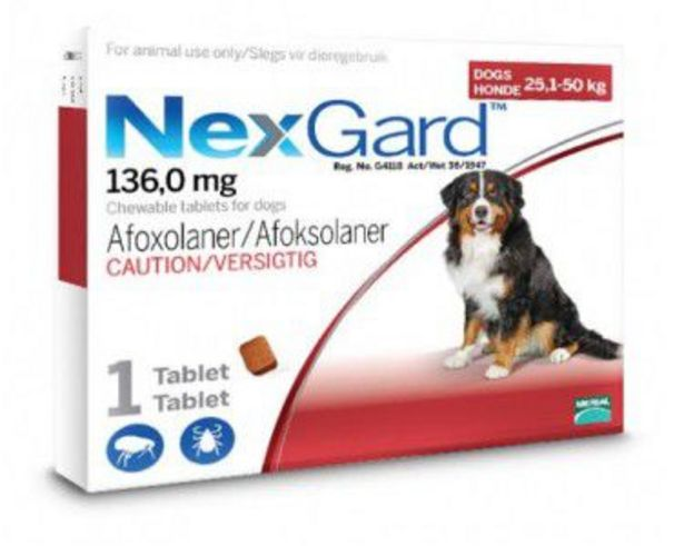 NexGard Chewables Tick & Flea Control for X-Large Dogs - 1 Tablet offer at R 142