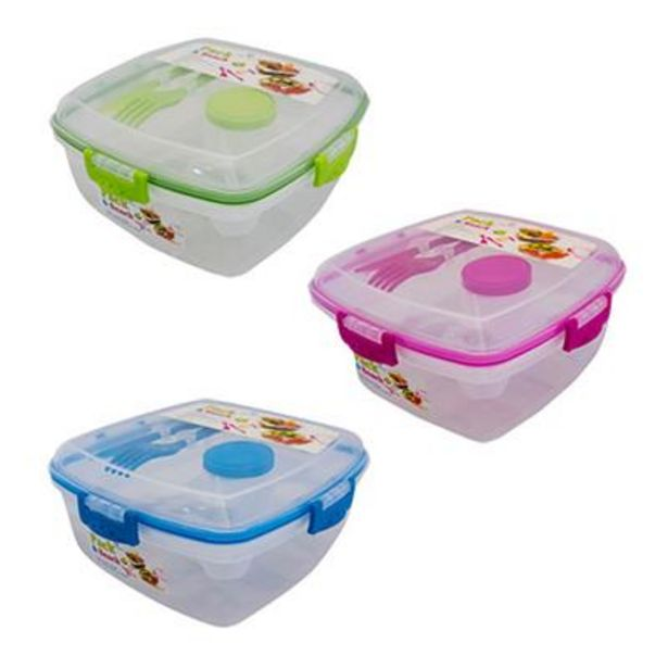 PACK & SNACK 1700ml LUNCH BOX WITH DRESSING & KNIFE FORK offer at R 69,9