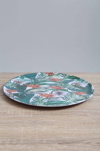 MELAMINE PLATE offers at R 25,99