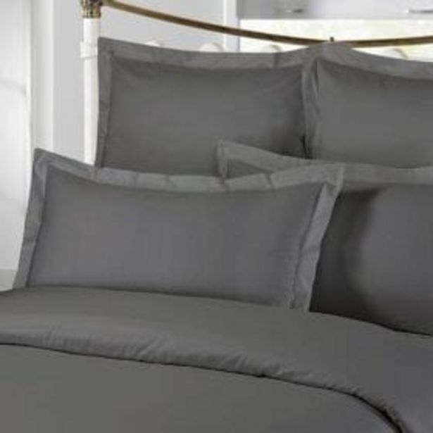 300TC PLAIN PILLOW CASE GREY offer at R 229