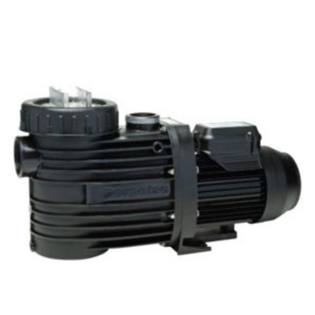 Badu Speck Pool Pump 0.75kW offer at R 2799