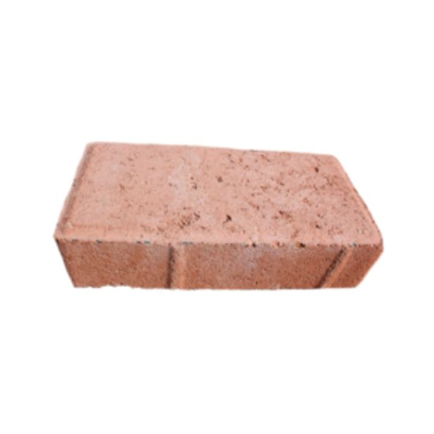CEMENT PAVER TERRACOTTA offers at R 3,5