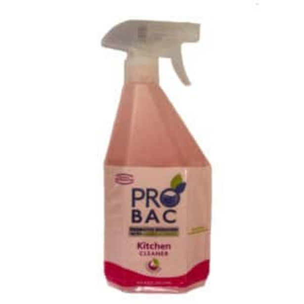 PRO BAC KITCHEN CLEANER 750ML offers at R 69,95