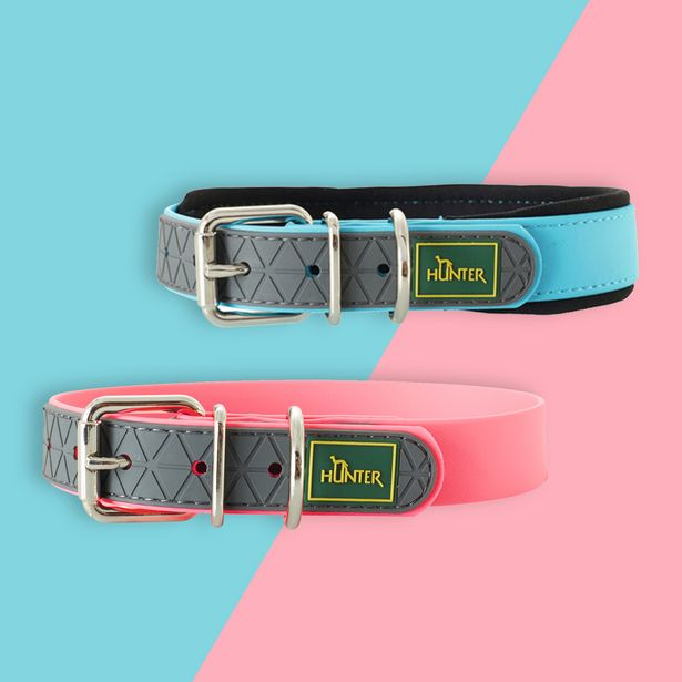 Convenience Comfort Adjustable Collar offers at R 179