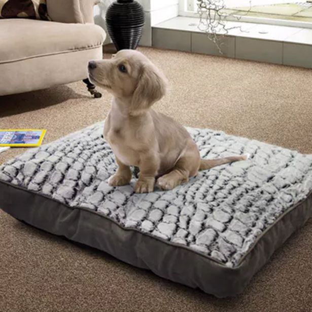 Deluxe Pet Day Bed offer at R 399
