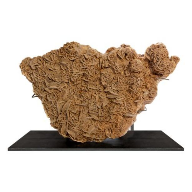 Desert Rose - Extra Large offers at R 13197