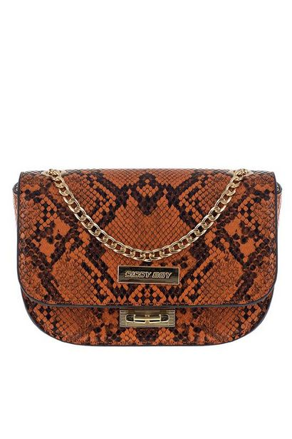 Snake Double Gold Chain Mini Bag offers at R 500