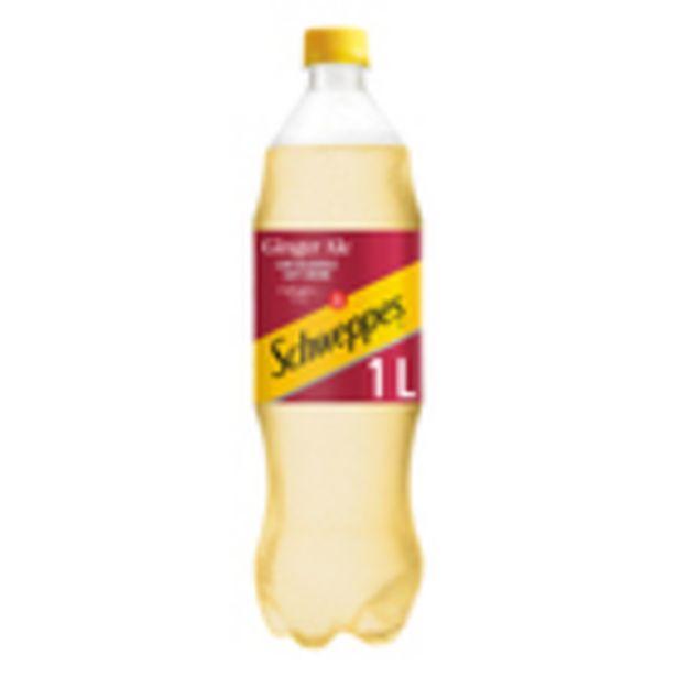 Schweppes Ginger Ale Plastic Bottle 1l offers at R 15,99