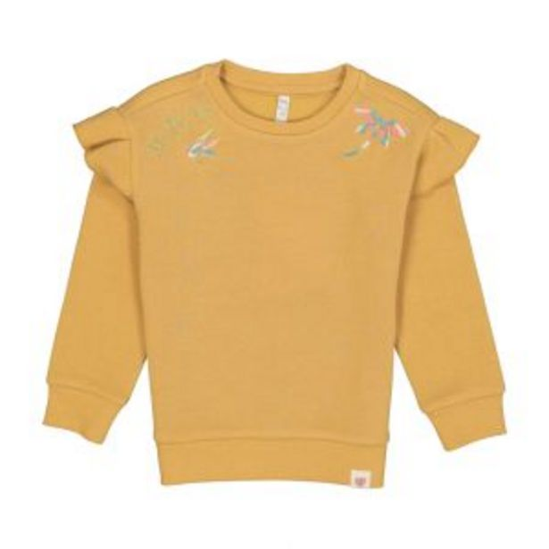 Younger Girl Embroidered Fleece Pullover offers at R 98