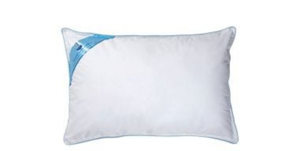 Sealy Natural Comfort Pillow offers at R 299