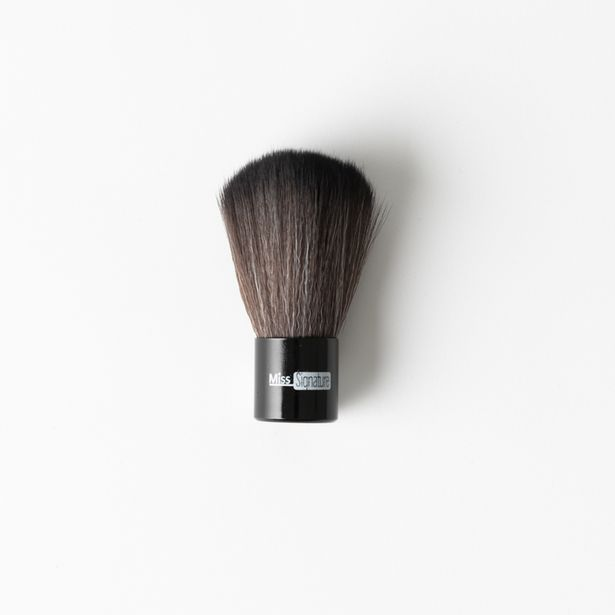 Short Powder Brush offers at R 32