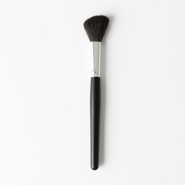 Blusher Brush offers at R 38