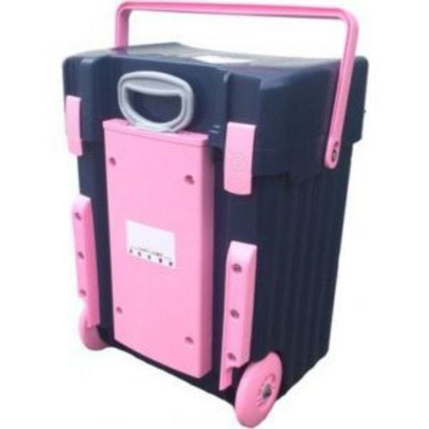 Cadii School Bag Grey and Pink offers at R 1599
