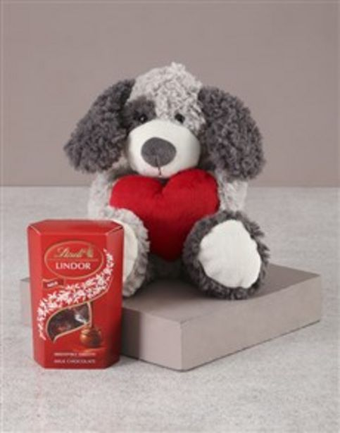 Puppy in Love offers at R 416