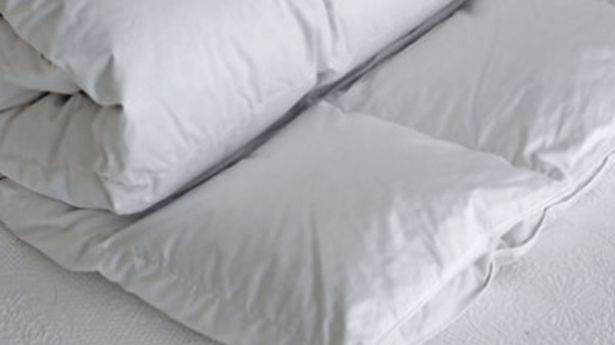 Comfort Solutions Duck Down Duvet Inner offers at R 2039