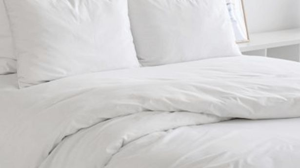 230 Thread Count Comfort Solutions Duvet Cover Sets offers at R 1359