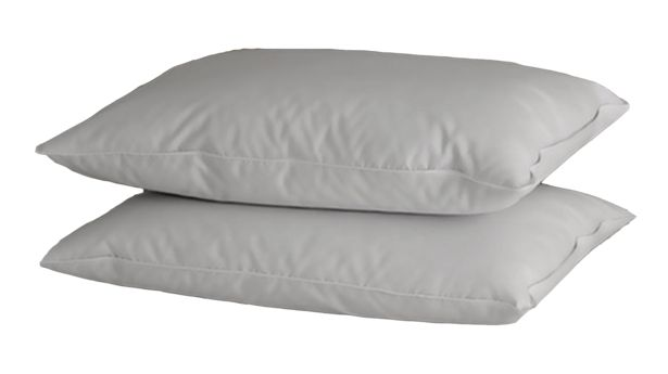 Comfort Solutions Goose Feather and Down Pillow offers at R 319