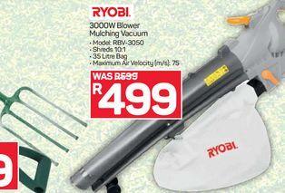 Ryobi Blower offers at R 499