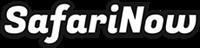 Logo SafariNow